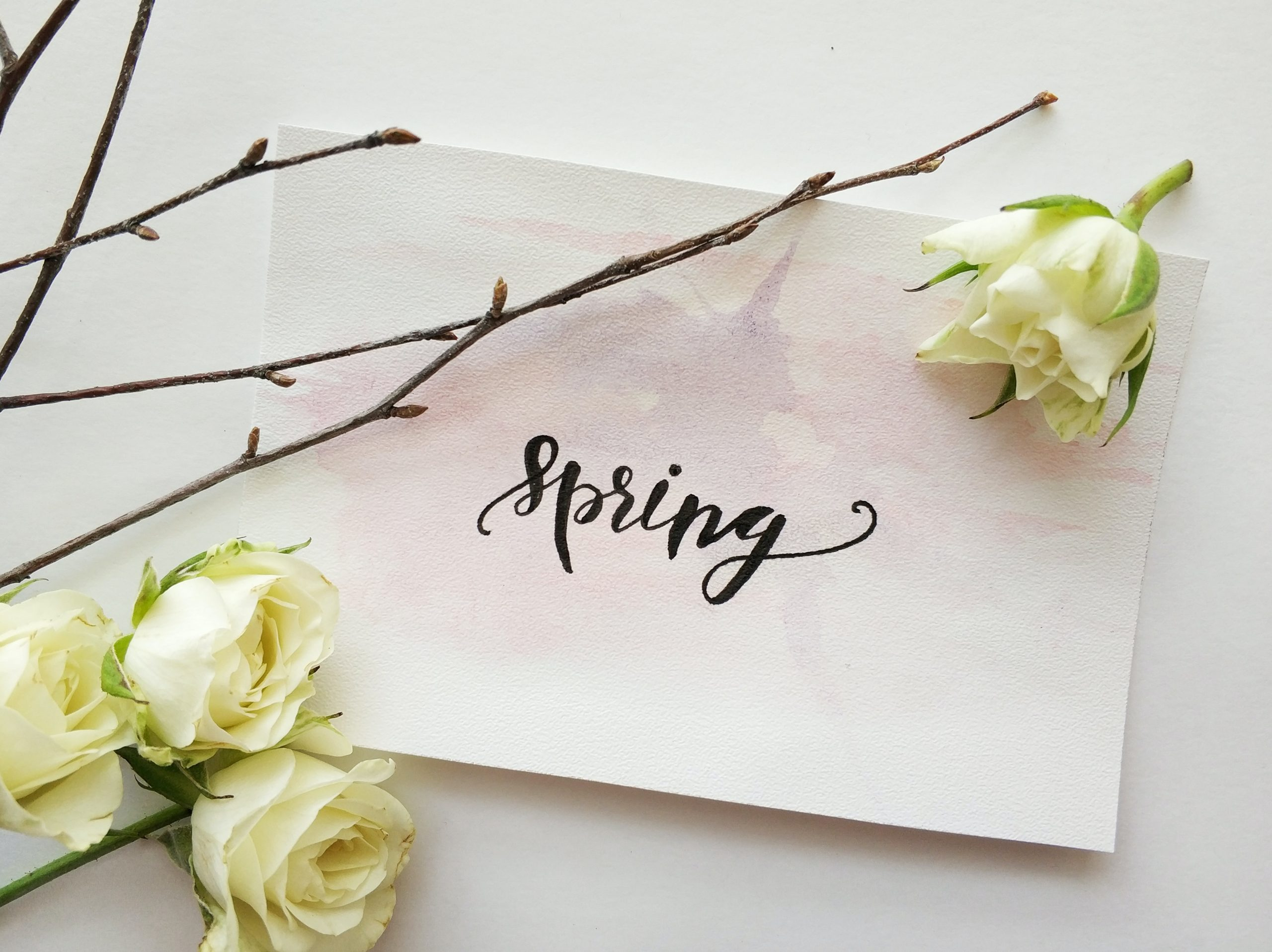 Spring_Cover_Photo
